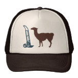 Dolly llama mesh hats