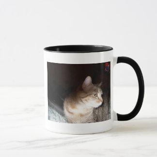 Dolly Mug