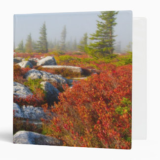 Dolly Sods Wilderness Fall Scenic With Fog Binder