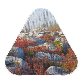 Dolly Sods Wilderness Fall Scenic With Fog Bluetooth Speaker