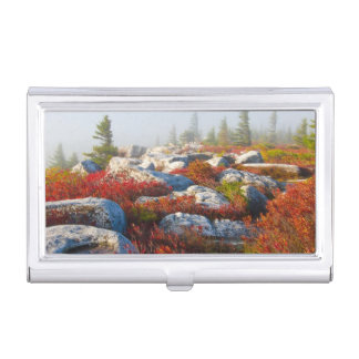 Dolly Sods Wilderness Fall Scenic With Fog Business Card Holder