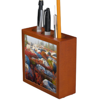 Dolly Sods Wilderness Fall Scenic With Fog Desk Organizer