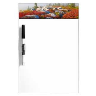Dolly Sods Wilderness Fall Scenic With Fog Dry-Erase Board
