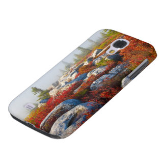 Dolly Sods Wilderness Fall Scenic With Fog Galaxy S4 Cover