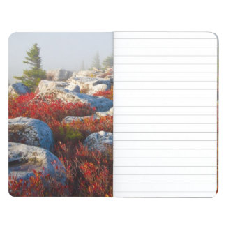 Dolly Sods Wilderness Fall Scenic With Fog Journal