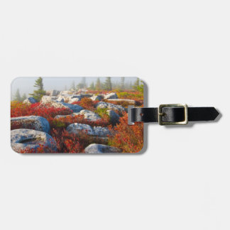 Dolly Sods Wilderness Fall Scenic With Fog Luggage Tag
