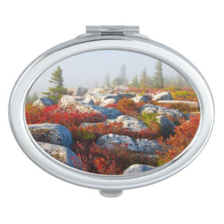 Dolly Sods Wilderness Fall Scenic With Fog Makeup Mirror