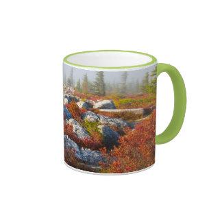 Dolly Sods Wilderness Fall Scenic With Fog Coffee Mug