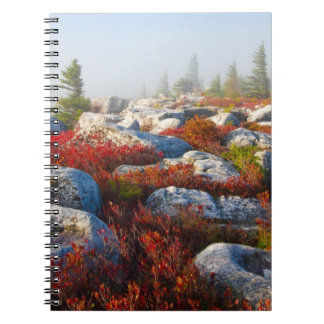 Dolly Sods Wilderness Fall Scenic With Fog Notebook