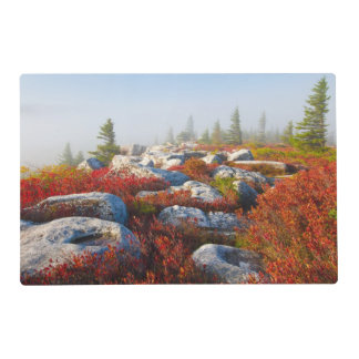 Dolly Sods Wilderness Fall Scenic With Fog Placemat