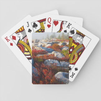 Dolly Sods Wilderness Fall Scenic With Fog Playing Cards