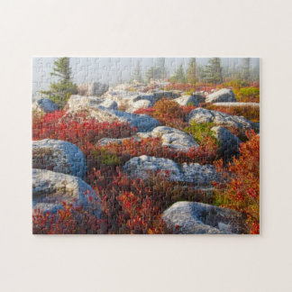 Dolly Sods Wilderness Fall Scenic With Fog Puzzle