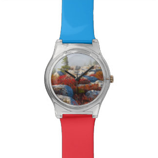 Dolly Sods Wilderness Fall Scenic With Fog Wrist Watch