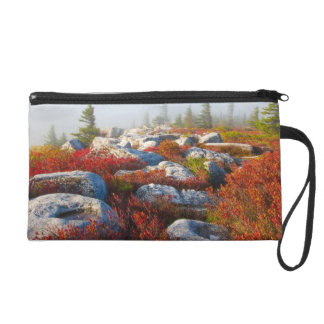Dolly Sods Wilderness Fall Scenic With Fog Wristlet Purse