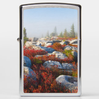 Dolly Sods Wilderness Fall Scenic With Fog Zippo Lighter