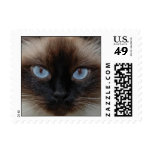 DOLLY THE RAGDOLL CAT POSTAGE STAMPS
