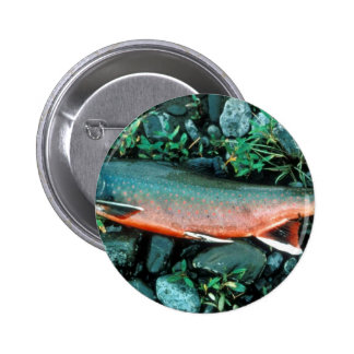 Dolly Varden Char Pinback Buttons