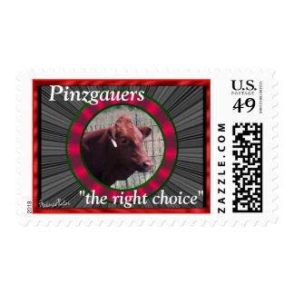 DollyStamp Postage Stamps