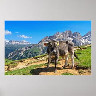 Dolomiti - pasto alpino impresiones