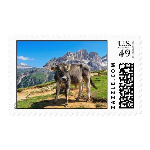 Dolomiti - pasto alpino sellos
