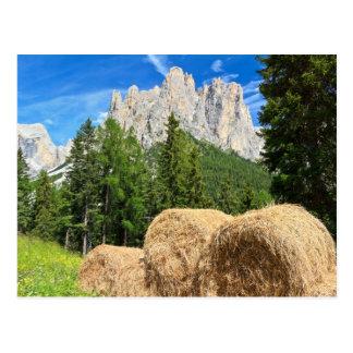 Dolomiti - pasto alpino tarjeta postal
