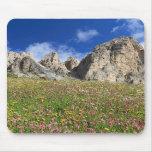 Dolomiti - prado florecido alfombrillas de raton