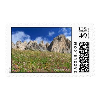 Dolomiti - prado florecido sello
