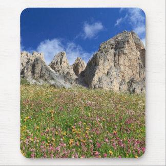 Dolomiti - prado florecido alfombrilla de ratón