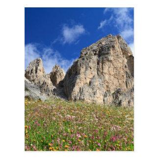 Dolomiti - prado florecido postal