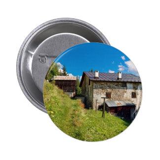 Dolomiti - Ronch village Pins