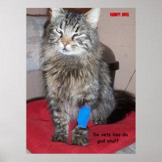 Dolor Meds para el gatito Póster