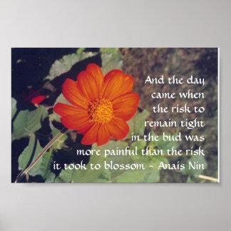Dolor y riesgo - Anais Nin - poster