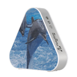 dolphin-104.jpg altavoz bluetooth