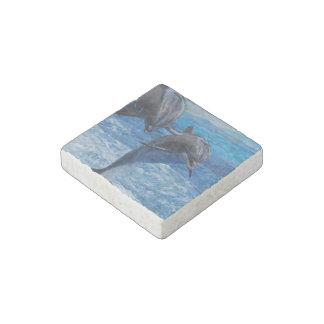 dolphin-104.jpg imán de piedra