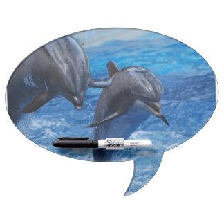 dolphin-104.jpg pizarra