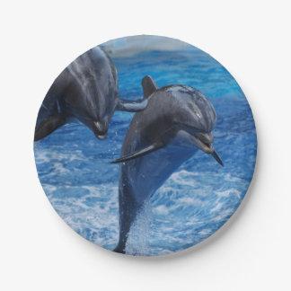 dolphin-104.jpg plato de papel de 7 pulgadas