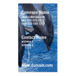 dolphin-105 Double-Sided standard business cards (Pack of 100)