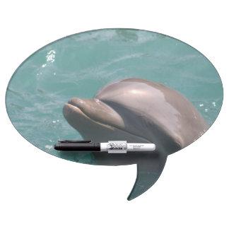 dolphin-15.jpg pizarras blancas
