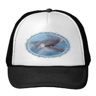 dolphin-4 trucker hat