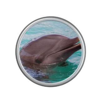 dolphin-8.jpg altavoz
