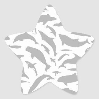 Dolphin a background star sticker