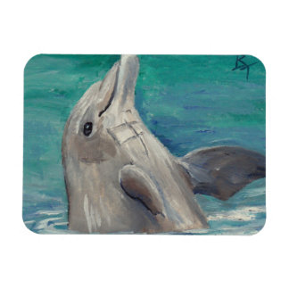 Dolphin aceo Magnet