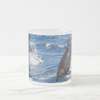 Dolphin Adventure Frosted Glass Coffee Mug