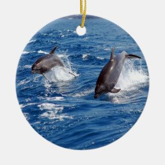 Dolphin Adventure Christmas Tree Ornaments