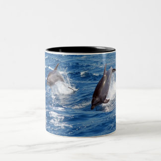 Dolphin Adventure Two-Tone Coffee Mug