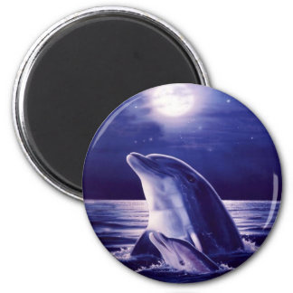 Dolphin and Baby Magnet