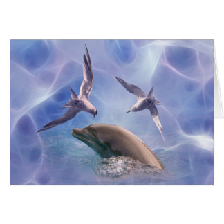 Dolphin and diving birds greeting cards