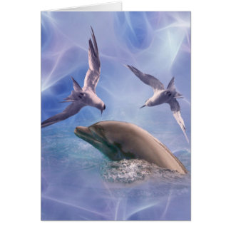 Dolphin and diving birds cards