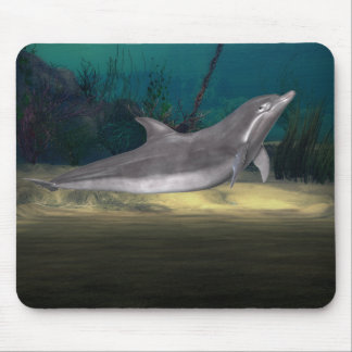 dolphin at play mouse pad