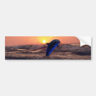 Dolphin at sunset bumper sticker